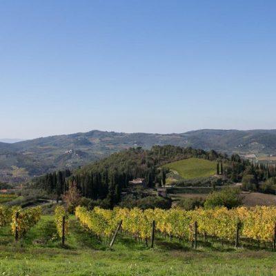 RIseccoli-stay-with-us-villa-il-poggio4